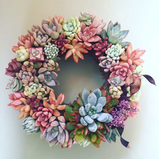 Succulent Wreath Design