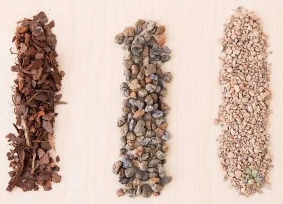 Succulent Soil Ingredients