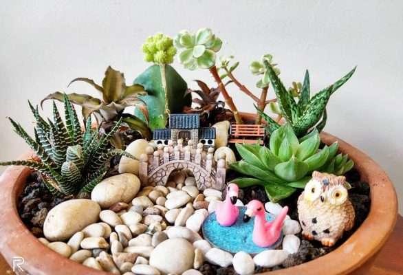Succulent Fairy Garden With Props