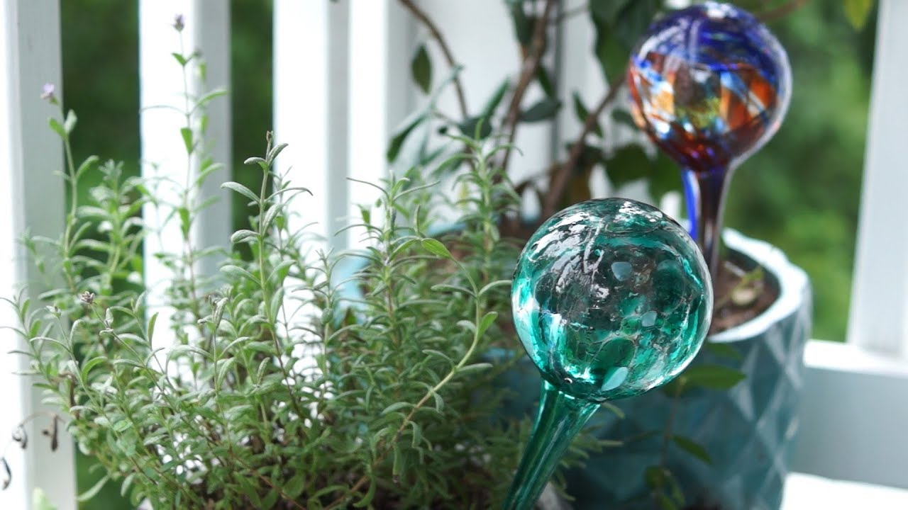 Water Globes In Pots